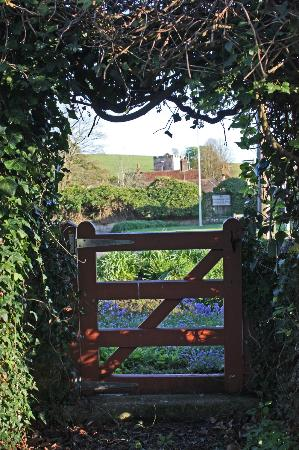 The Old Post Office B&B: The view of Singleton church from the garden
