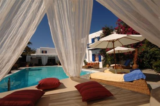 Dionysos Boutique Hotel: Pool