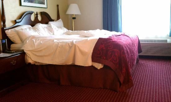 GrandStay Hotel & Suites Appleton-Fox River Mall: bed