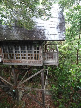 Permai Rainforest Resort: treehouse 8