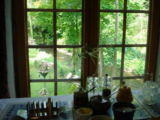 Yr Hen Felin Bed and Breakfast : The view from breakfast