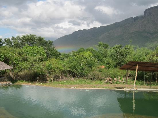 Jungle Retreat : Rainbow