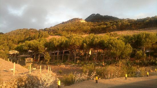 Hotel Quinta Do Serrado: Beautiful natural oasis setting