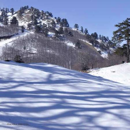 National Snow Center Vasilitsas: Vasilitsa Grevena Greece