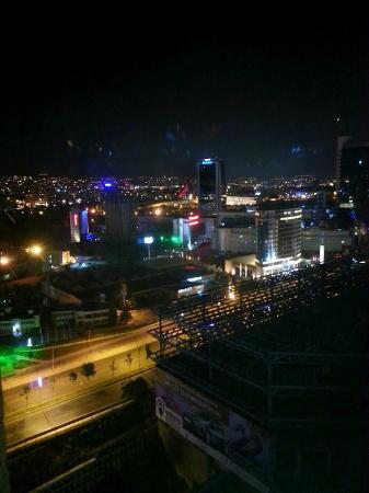 JW Marriott Hotel Ankara: Hotel View