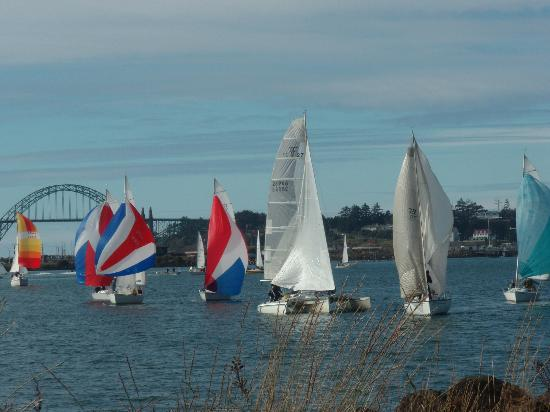 The Landing at Newport Condominium-Hotel: Summer Sailboat races