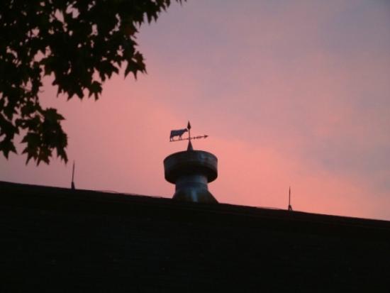写真Truman Gillet House B & B枚