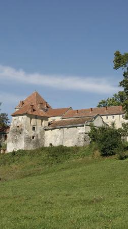 Svirzh Castle : View