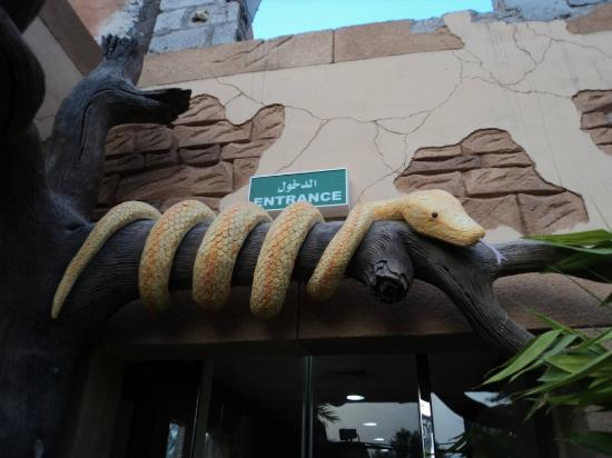 Emirates Park Zoo: Entry gate, Snake Room