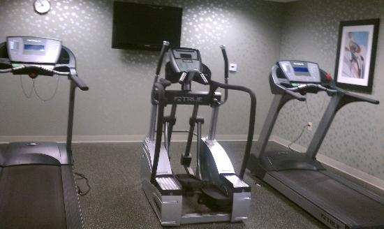Holiday Inn Express Hotel & Suites Largo-Clearwater: gym