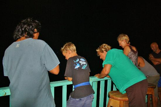 Tranquility Bay Resort: Everyone gathers on the deck during dinner/evening...if you're lucky you'll see Daniel land a sh