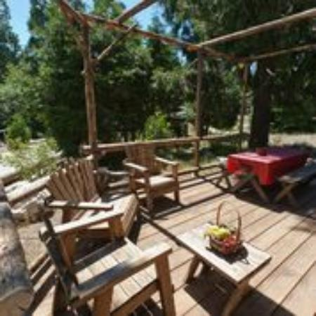 Arrowhead Pine Rose Cabins: The back deck of Wild Bills over looks one of our many streams