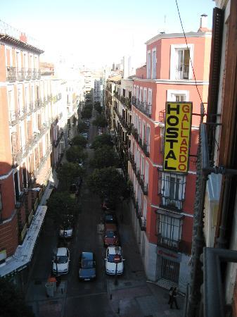 Hostal Gallardo: View from our room of Calle la Apodaca