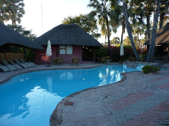 Northgate Lodge: pool area and single rooms