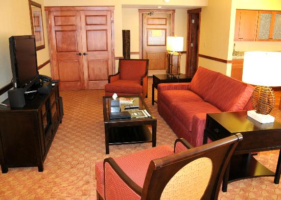Grand Suite Living Room Area With Queen Sleeper Sofa And Murphy Bed