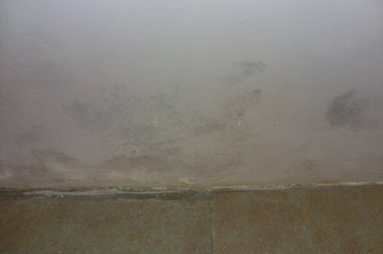 Club Amarissa: More mould and damp