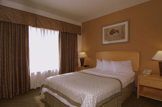 MainStay Suites by Ft. Sam Houston: One Queen Bed Suite