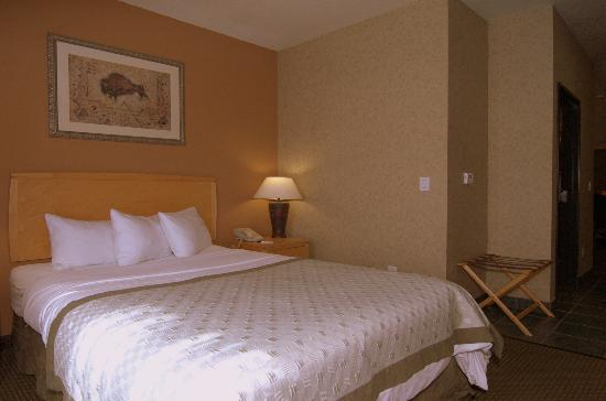 MainStay Suites by Ft. Sam Houston: 1 Queen Bed Suite with Sofa Bed