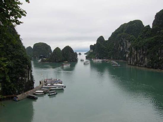 Darian Culbert: ha long bay view from sung sot cave