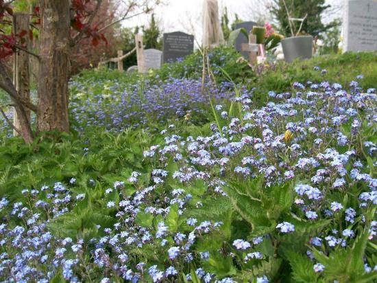St. Mary's Church (Sompting Parish Church): Graveyard
