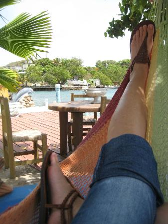 Villa Boheme: View from a hammock.