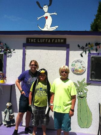 The Luffa Farm: Gift shop