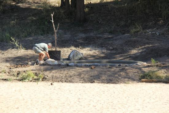Rhino Post Safari Lodge: Finishing touches to new waterhole.