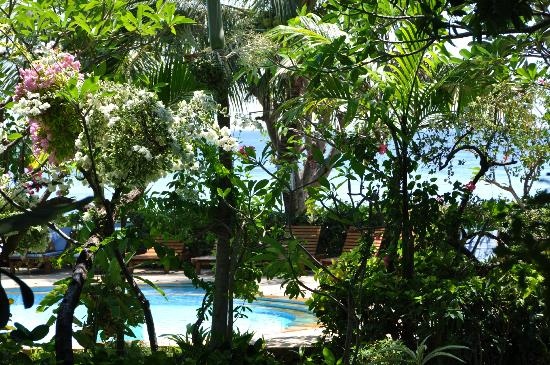 Kusuma-Jaya-Indah Resort: Pool