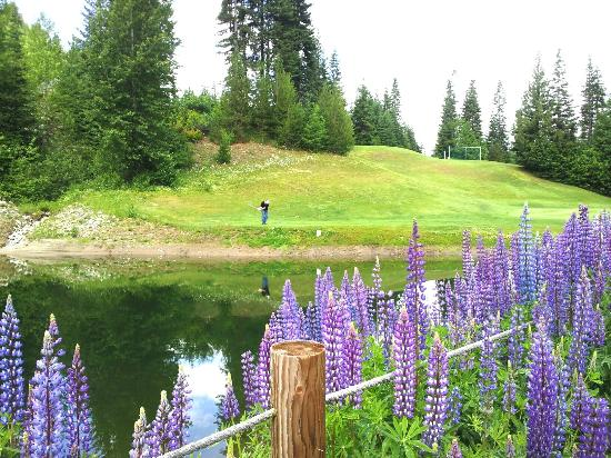 Kahler Glen Golf & Ski Resort: golfing on a beautiful day