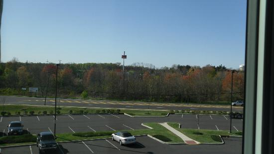 Hilton Garden Inn Mount Holly/Westampton: This was April before most blooming. Must be beautiful in autumn
