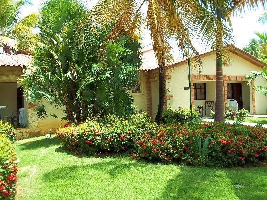 Piscine picture of ifa villas bavaro resort spa for Villas bavaro