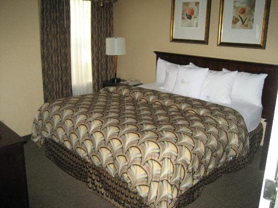 Homewood Suites by Hilton San Jose Airport-Silicon Valley: King size bed