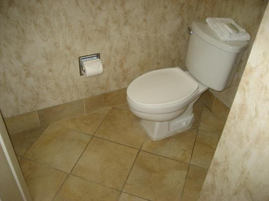 Homewood Suites by Hilton San Jose Airport-Silicon Valley: bathroom