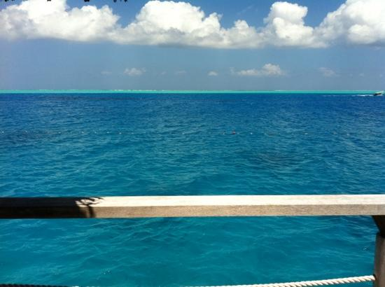 Vahine Island Resort: sighhhh.....