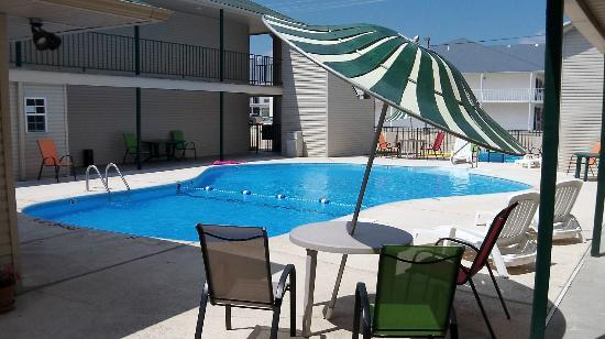 Southern Oaks Inn: Outdoor pool area
