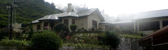 Tea Bush Hotel : Hotel coverd from the mist