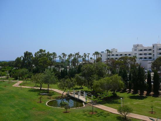 Asterias Beach Hotel: The hotel