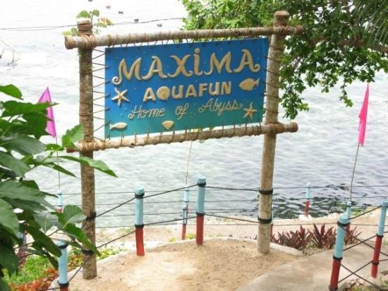 Maxima Aquafun: maxima