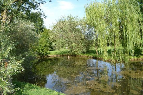 Relais Agriturismo Ormesani : Park