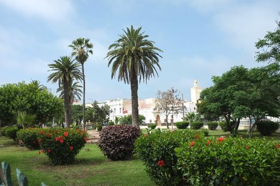 Riad La Villa & SPA : Local park