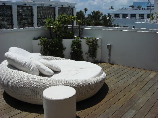 Dream South Beach: Sun Lounger