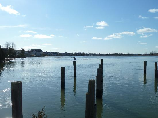 Green Harbor, MA: View of Cut River