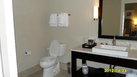 Bluegreen Vacations Studio Homes at Ellis Square, an Ascend Resort Collection : Bathroom