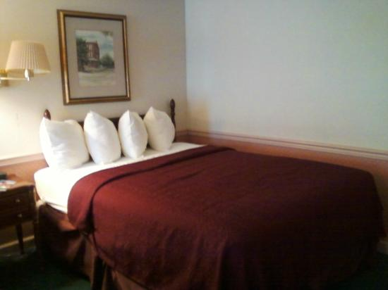 Rodeway Inn & Suites Myerstown - Lebanon: Double bed
