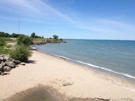 Geneva State Park: The view of Lake Erie