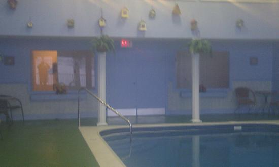 St. Andrews Motor Inn: pool area