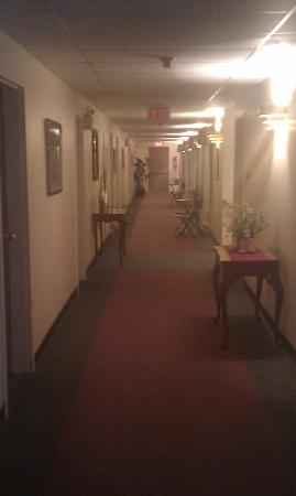 St. Andrews Motor Inn: hall way on 3rd floor