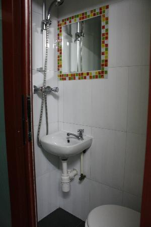 بارك جيست هاوس: bathroom. shower over toilet.