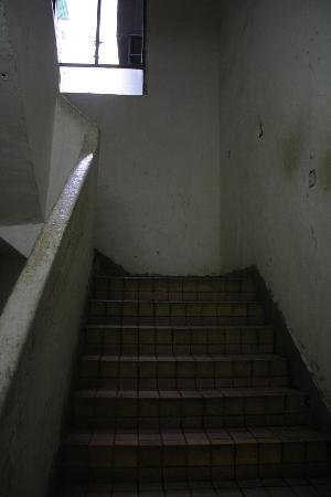 Park Guest House: Stairs