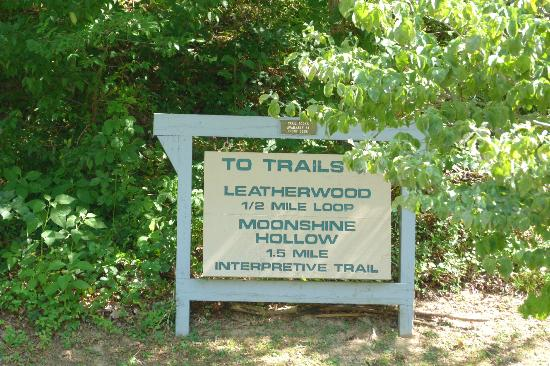 Buckhorn Lake State Resort : Trail Sign